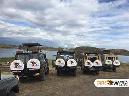 Best African Safari Tour Operators for Trips to Tanzania